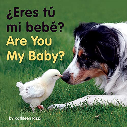 9781595722591: Are You My Baby? (Photoflaps Boardbooks)
