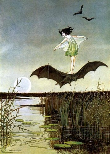 Little Witch Riding Bat Greeting Card (Fairies)