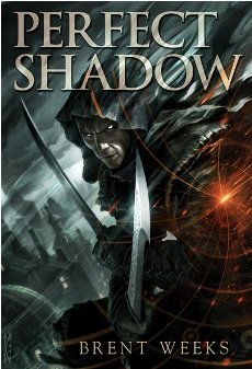 9781596064157: Perfect Shadow [signed edition]