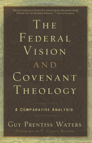 9781596380332: The Federal Vision and Covenant Theology: A Comparative Analysis