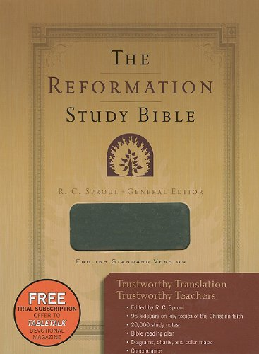 The Reformation Study Bible - Imitation Leather-Gray (1596382422) by R. C. Sproul