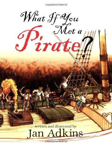 9781596431829: What If You Met A Pirate?