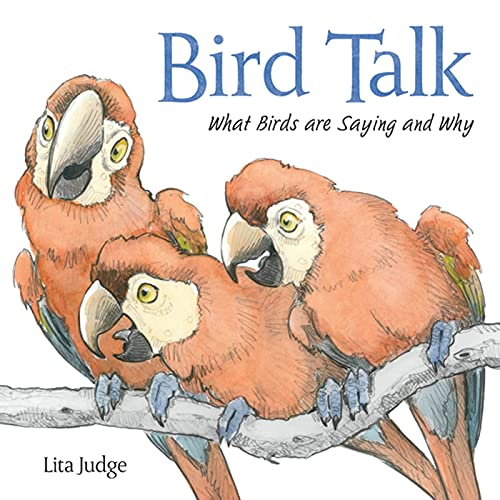 Bird Talk: What Birds Are Saying and Why: Judge, Lita