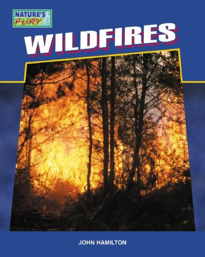 9781596793309: Wildfires (Nature's Fury)