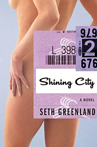 9781596915046: Shining City: A Novel