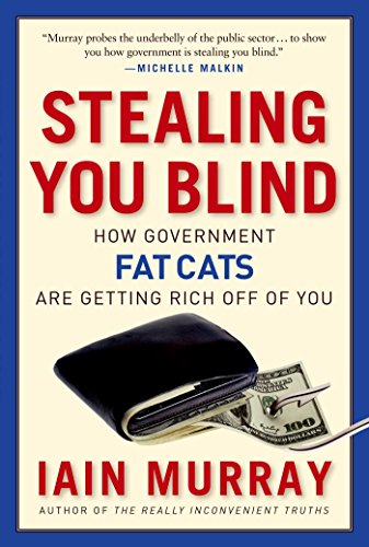 9781596981539: Stealing You Blind: How Government Fat Cats Are Getting Rich Off of You
