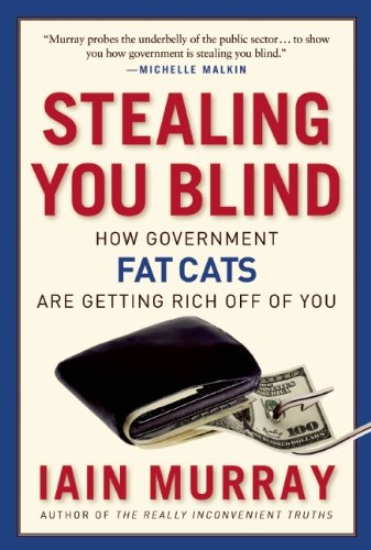 9781596982093: Stealing You Blind: How Government Fat Cats Are Getting Rich Off of You