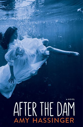 9781597097536: After the Dam
