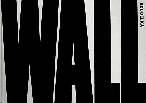 Josef Koudelka: Wall: Dolphin, Ray, Baram, Gilad
