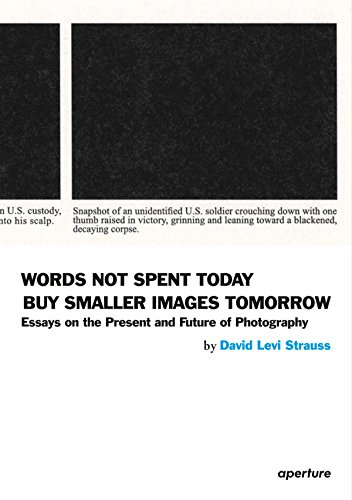 Words Not Spent Today: Essays on the: David Levi Strauss