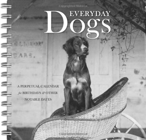 Everyday Dogs: A Perpetual Calendar for Birthdays and Other Notable Dates (1597141593) by Mary Scott; Susan Snyder