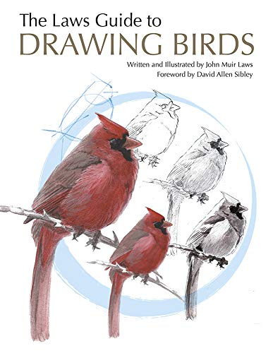 9781597141956: Laws Guide to Drawing Birds, The