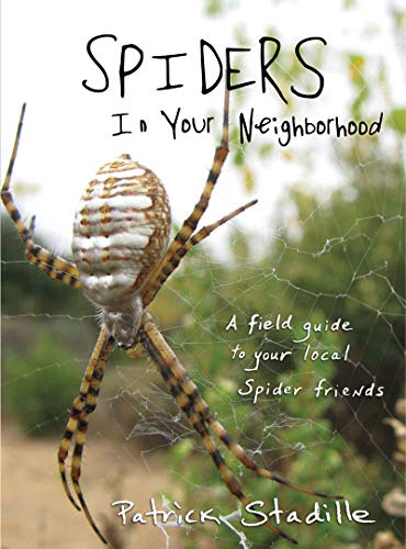 Spiders in Your Neighborhood: A Field Guide to Your Local Spider Friends: Stadille, Patrick
