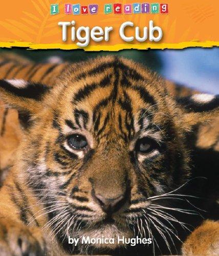 9781597161558: Tiger Cub (I Love Reading (Hardcover))