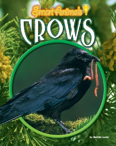 9781597161602: Library Book: Crows (Smart Animals)