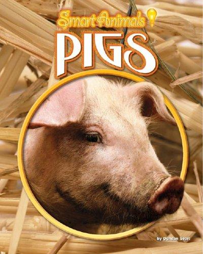 Pigs (Smart Animals): Searl, Duncan