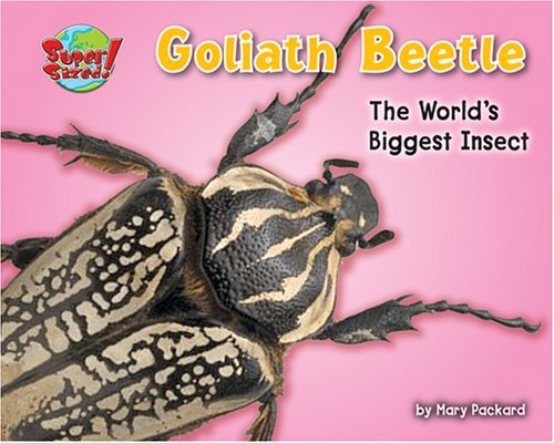 Goliath Beetle: One of the World's Heaviest Insects (Supersized!) (1597163880) by Packard, Mary