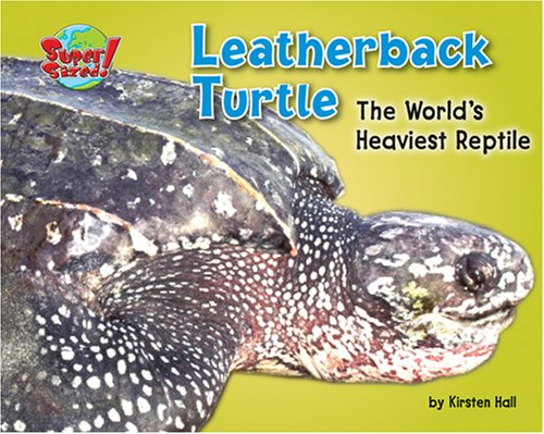 Leatherback Turtle: The World's Heaviest Reptile (Supersized!): Hall, Kirsten