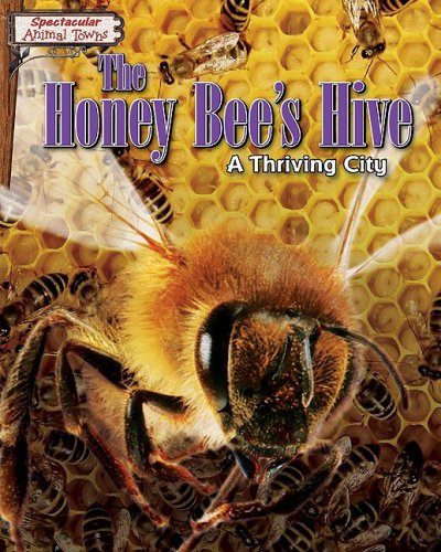 9781597168670: The Honey Bee's Hive: A Thriving City (Spectacular Animal Towns)