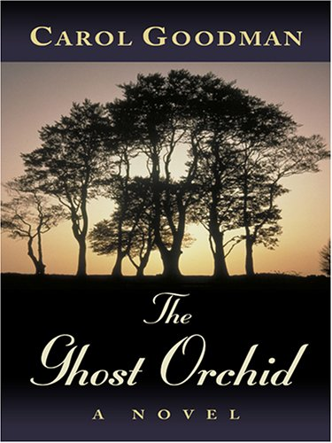 9781597221948: The Ghost Orchid (Wheeler Hardcover)