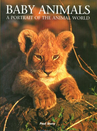 9781597641098: Baby Animals: A Portrait of the Animal World