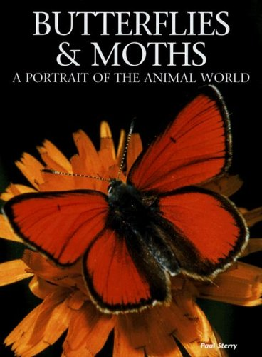 Butterflies and Moths: A Portrait of the Animal World: Sterry, Paul
