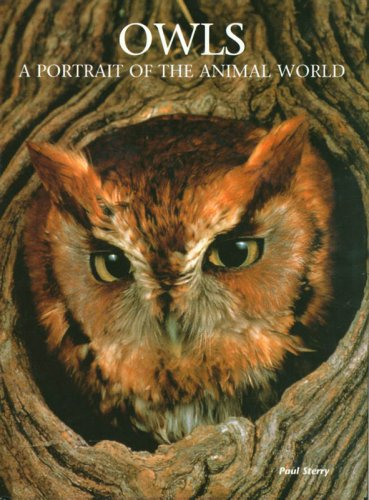 9781597641388: Owls: A Portrait of the Animal World
