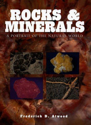 9781597641432: Rocks and Minerals: A Portrait of the Natural World