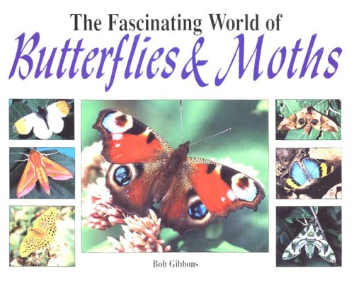 9781597641982: The Fascinating World of Butterflies and Moths