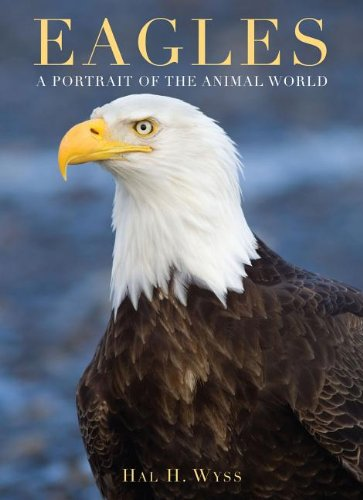 9781597643238: Eagles (A Portrait of the Animal World)