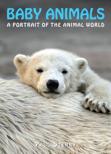 9781597643467: Baby Animals (A Portrait of the Animal World)