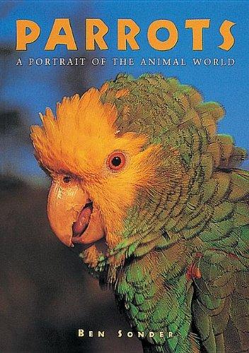9781597643511: Parrots (A Portrait of the Animal World)