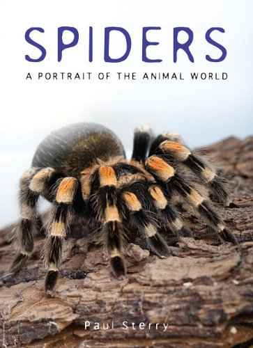 9781597643719: Spiders: A Portrait of the Animal World