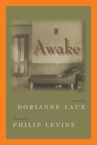 9781597660303: Awake (Lynx House Book)