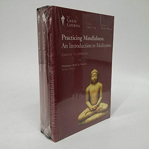 9781598037913: Practicing Mindfulness: An Introduction to Meditation