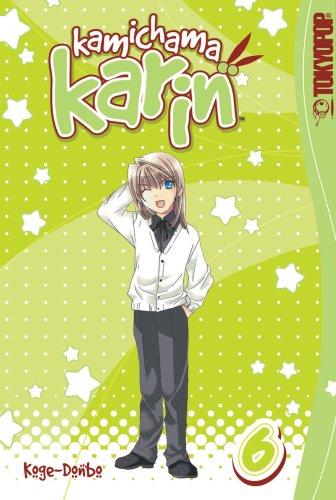 9781598161878: Kamichama Karin: Volume 6