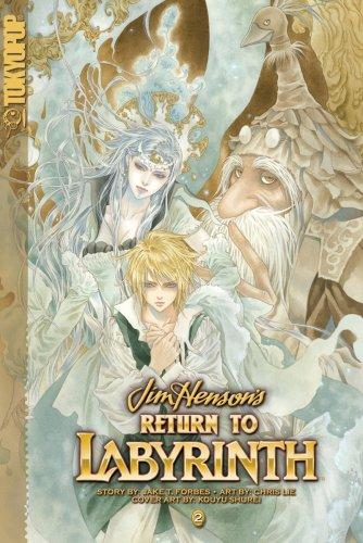 9781598167269: Return to Labyrinth Volume 2 (v. 2)