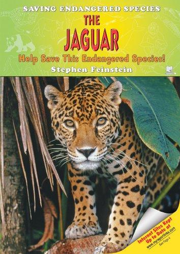 The Jaguar: Help Save This Endangered Species! (Saving Endangered Species): Stephen Feinstein