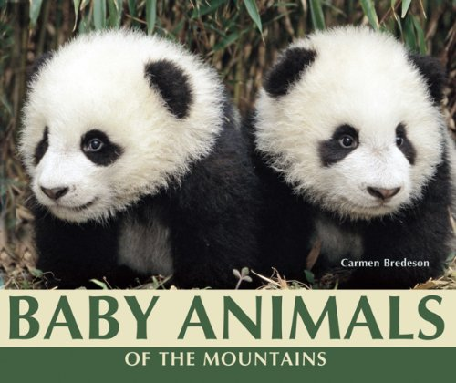9781598452259: Baby Animals of the Mountains (Nature's Baby Animals)
