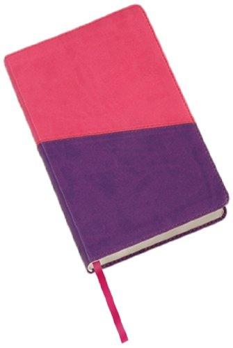 9781598563535: Holy Bible: King James Version, Violet/pink, Imitation Leather, Kids Study Bible
