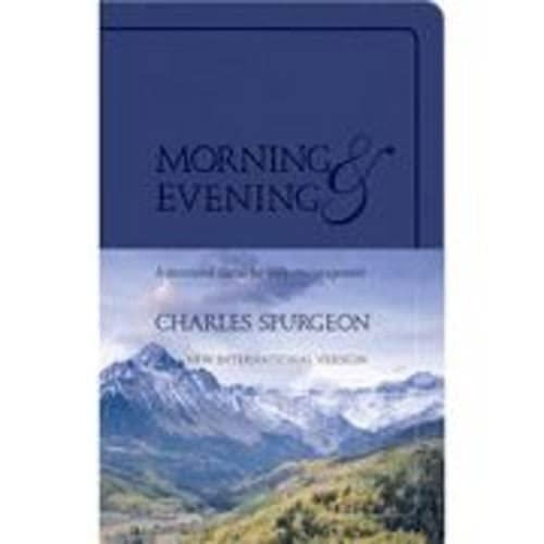 9781598566765: Morning & Evening, New International Version (Blue Imitation Leather)