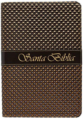 9781598774320: Santa Biblia-Rvr 1960 (Spanish Edition)
