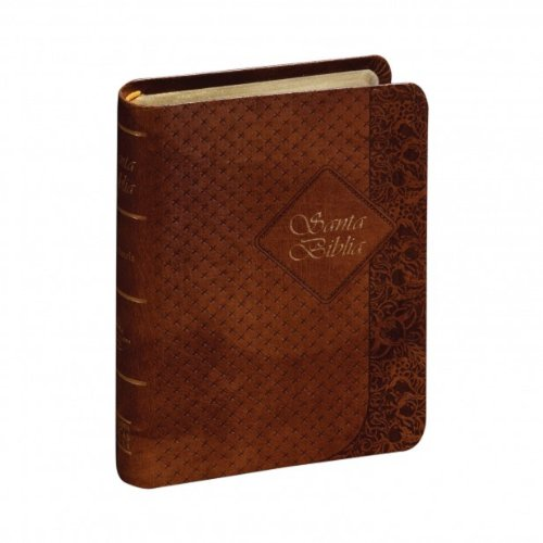 9781598775464: RVR60 Bible - Coffee Color Cover (Spanish Edition)