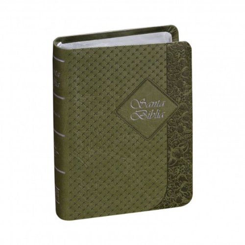 9781598775488: RVR60 Bible - Green Color Cover (Spanish Edition)