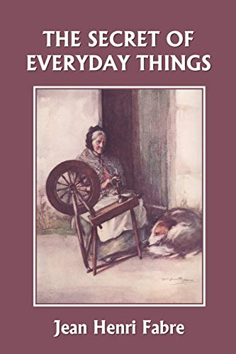 9781599152523: The Secret of Everyday Things (Yesterday's Classics)