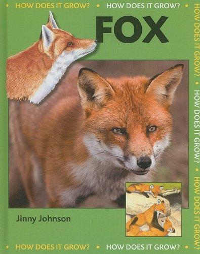 9781599203546: Fox (How Does It Grow?)