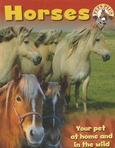 Horses (Pets Plus): Morgan, Sally