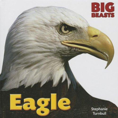 Eagle (Hardback): Stephanie Turnbull