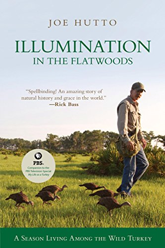 9781599211978: Illumination in the Flatwoods: A Season With the Wild Turkey