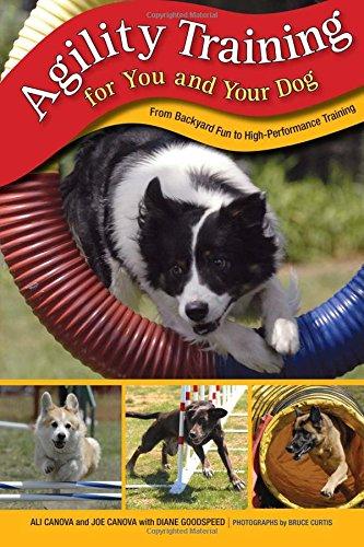 Agility Training for You and Your Dog: Ali Canova; Joe